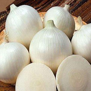 Onion (White)