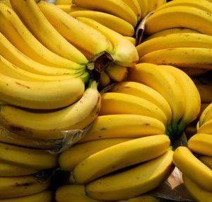 banana-lakatan