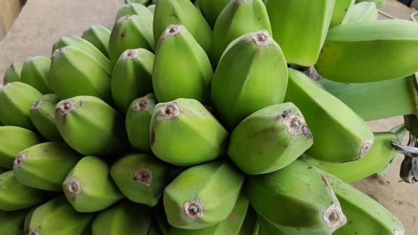 banana-saba